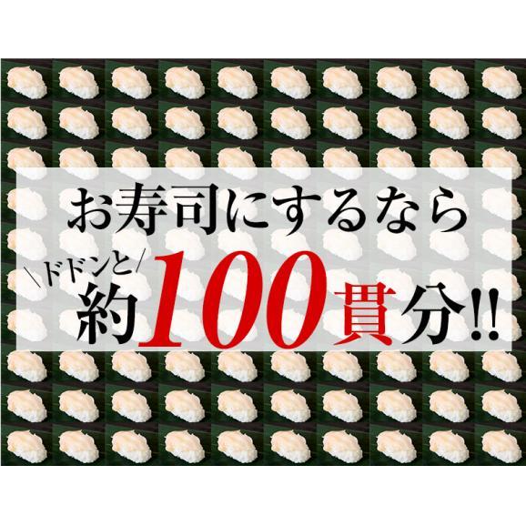 つぶ貝 刺身用 ロシア産 ツブ貝スライス(5g×20枚入り) ×5Pセット 送料無料05
