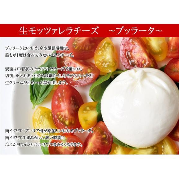 チーズ 花畑牧場 花畑牧場 生モッツァレラ ブラータ 70g×9個入り ナチュラルチーズ 冷凍04