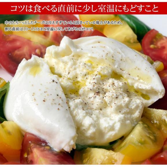 チーズ 花畑牧場 花畑牧場 生モッツァレラ ブラータ 70g×9個入り ナチュラルチーズ 冷凍06