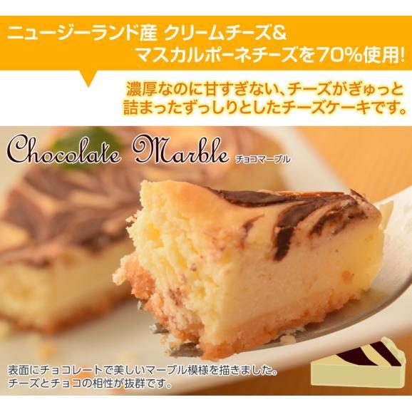 チーズケーキ 送料無料 濃厚『クラシックチーズケーキ』プレーン ミルクティー チョコマーブル マンゴー ミックスベリー 5種×2P03