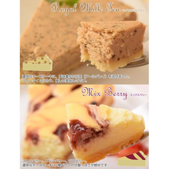 チーズケーキ 送料無料 濃厚『クラシックチーズケーキ』プレーン ミルクティー チョコマーブル マンゴー ミックスベリー 5種×2P04