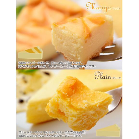 チーズケーキ 送料無料 濃厚『クラシックチーズケーキ』プレーン ミルクティー チョコマーブル マンゴー ミックスベリー 5種×2P05