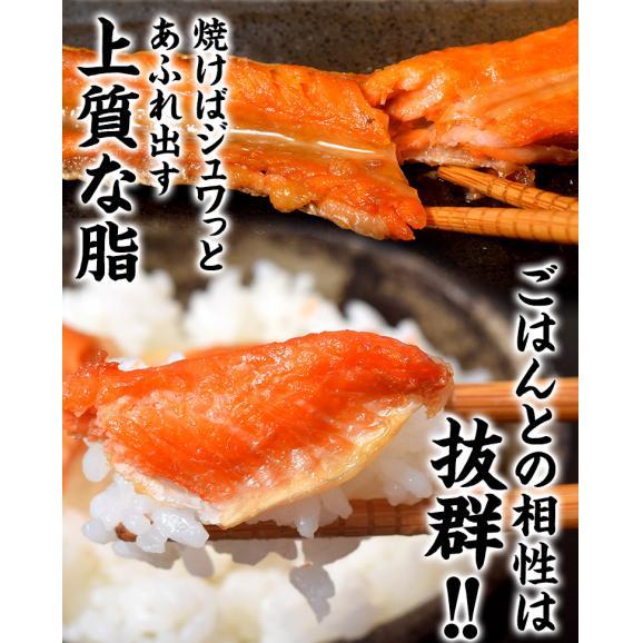 シャケ さけ 紅鮭 大トロ ハラス どっさり1キロ(500g×2P)送料無料 ※冷凍 03