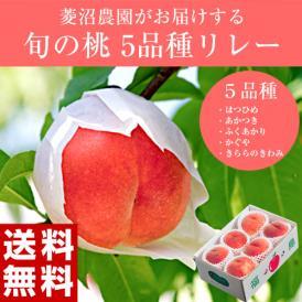 桃 もも お中元 福島オリジナル品種限定 菱沼農園がつくる 5品種桃リレー (はつひめ、あかつき、ふくあかり、かぐや、黄ららのきわみ) 各約2キロ 送料無料