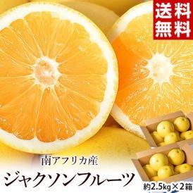 ジャクソンフルーツ 南アフリカ産 約2.5kg×2箱 (1箱の目安6〜12個)※常温 送料無料