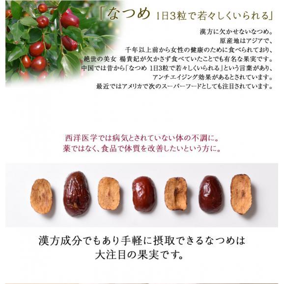 ドライフルーツ 砂糖不使用 無添加 赤い なつめ 20g×3袋 セット 新食感 棗 ナツメ 赤いなつめ ドライ フルーツ 美容 健康 パン おやつ 乾燥 果物 常温 送料無料 ゆうメール 同梱不可04