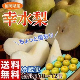 梨 幸水 福岡県産 幸水梨 約5kg 大玉 (10~12玉) ※冷蔵 送料無料