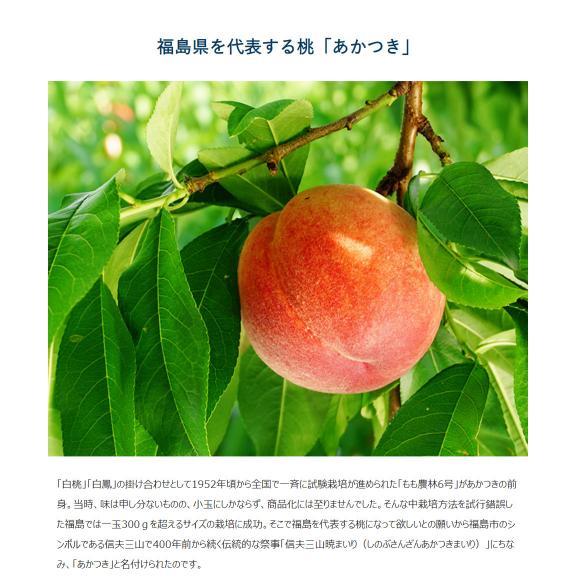 JAふくしま未来 福島県産 伊達の桃 品種限定 『あかつき』 秀品 約1.5kg (6~9玉) × 2箱 産地箱 ※常温 送料無料03
