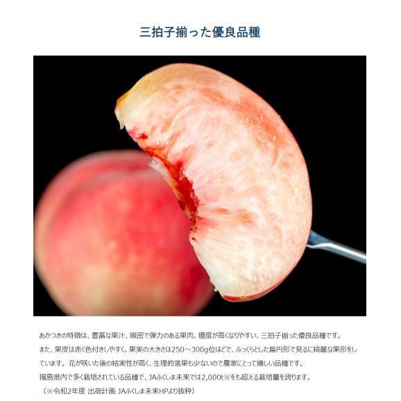 JAふくしま未来 福島県産 伊達の桃 品種限定 『あかつき』 秀品 約1.5kg (6~9玉) × 2箱 産地箱 ※常温 送料無料04