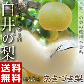 梨 なし 千葉県産 白井の梨 あきづき 約2.5kg 6~9玉 1箱 冷蔵 送料無料