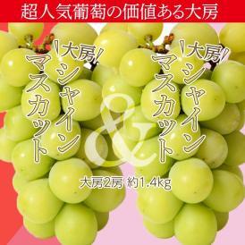 葡萄 ぶどう 山梨県産 特大シャインマスカット 2房 合計約1.4kg ※冷蔵 送料無料