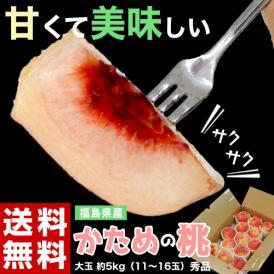 桃 もも 福島県産 かための桃 大玉 秀品 約5kg (11〜16玉) 送料無料