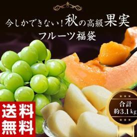 梨 メロン 葡萄 秋の高級果物3種福袋(シャインマスカット、大玉梨、らいでん赤肉メロン)合計 約3.1kg 送料無料