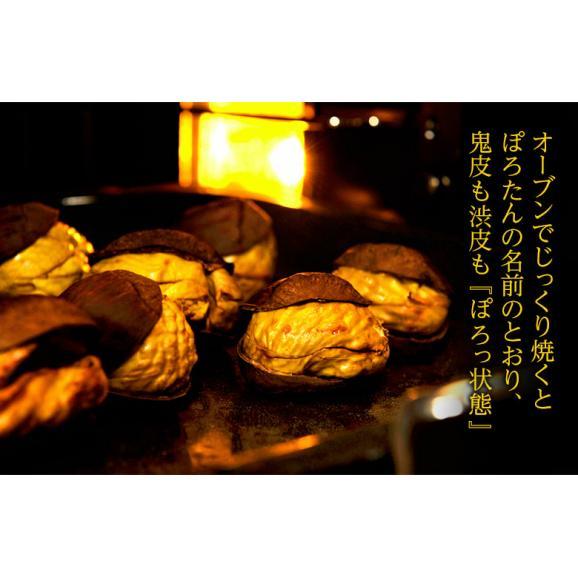 JA菊池 『低温熟成 ぽろたん』熊本県産 栗 2L~3Lサイズ 約2kg ※冷蔵 産地直送 送料無料04