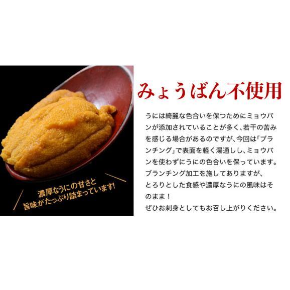 うに ウニ 雲丹 チリ産 天然うに 生食用 100g 冷凍同梱可能04