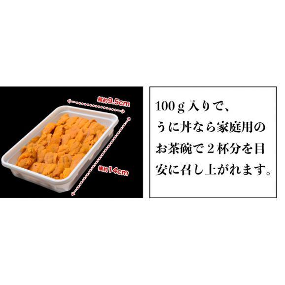 うに ウニ 雲丹 チリ産 天然うに 生食用 100g 冷凍同梱可能06