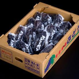黒ぶどう 『スチューベン』青森県産 約4.5kg(15~25房) ※冷蔵 送料無料