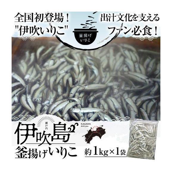 いりこ イリコ 香川県産 伊吹島釜揚げいりこ 1kg×1袋 送料無料 ※冷凍01