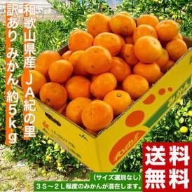 みかん ミカン 和歌山県産 JA紀の里 訳あり みかん 約5kg サイズ無選別(大~小込) 送料無料