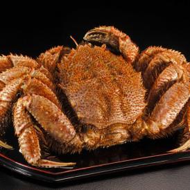 令和元年新物 北海道産 超特大「毛蟹」 堅蟹 1尾 約1kg かに カニ 蟹 ケガニ 毛ガニ 毛がに 冷凍 送料無料