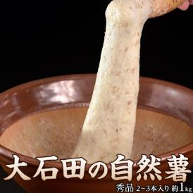 山形県産大石田 雪下 自然薯 じねんじょ 秀品 1キロ(2~3本入り) 産地直送 とろろ ご飯 冷蔵 同梱不可
