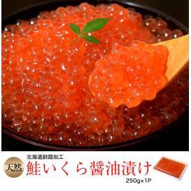 イクラ いくら 魚卵 北海道釧路加工 天然鮭いくら醤油漬 250g×1P