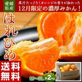 みかん ミカン 蜜柑 オレンジ 柑橘 愛媛県産 はれひめ お試し用 約2kg M~3L 送料無料