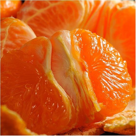 みかん 柑橘 訳あり品 新品種 香川県産 西南のひかり 約5kg (M~3L) 送料無料01