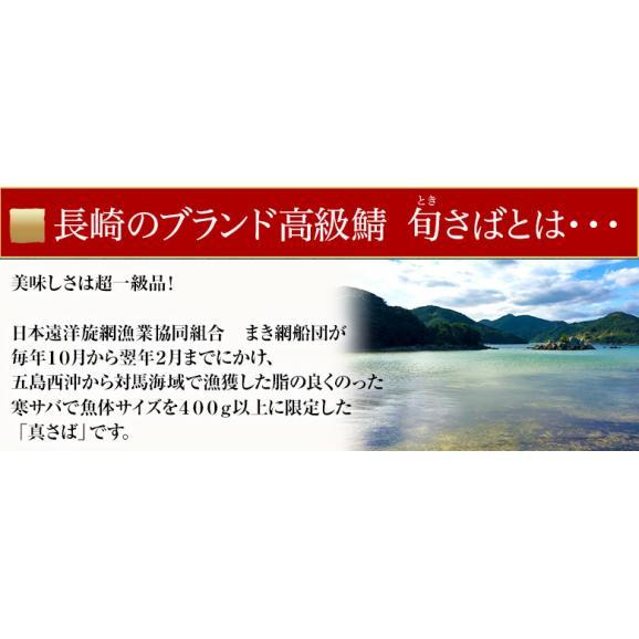 さば サバ 鯖 長崎県産 旬サバ [ときさば] 塩さば 1袋2枚入り 約220g 干物 魚 さかな 冷凍 冷凍同梱可能03