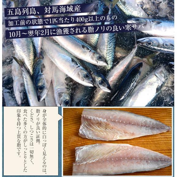 さば サバ 鯖 長崎県産 旬サバ [ときさば] 塩さば 1袋2枚入り 約220g 干物 魚 さかな 冷凍 冷凍同梱可能04