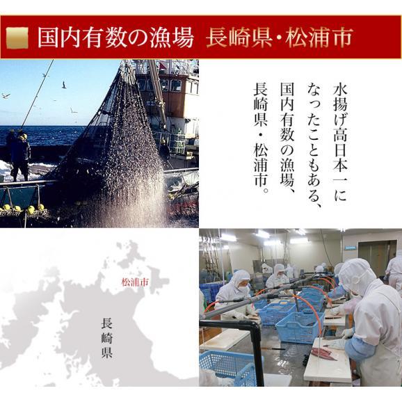 さば サバ 鯖 長崎県産 旬サバ [ときさば] 塩さば 1袋2枚入り 約220g 干物 魚 さかな 冷凍 冷凍同梱可能05