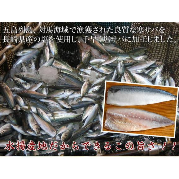 さば サバ 鯖 長崎県産 旬サバ [ときさば] 塩さば 1袋2枚入り 約220g 干物 魚 さかな 冷凍 冷凍同梱可能06