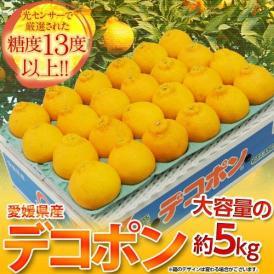 柑橘 デコポン 糖度13度基準 愛媛県三崎産 デコポン L~3Lサイズ 約5kg 目安として18~24玉 送料無料 常温