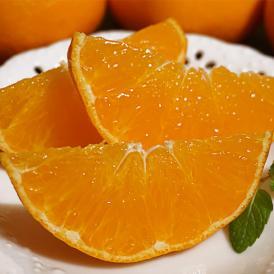 『訳あり甘平(かんぺい)』愛媛県産 柑橘 L~4Lサイズ 風袋込み約2.5kg 簡易包装 ※常温 送料無料