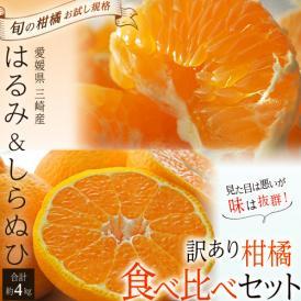 みかん 柑橘 愛媛県三崎産 訳あり柑橘セット しらぬひ(デコポンと同品種) M~3Lサイズ 約2kg はるみ M~4Lサイズ 約2kg 合計 約4kg 送料無料 常温