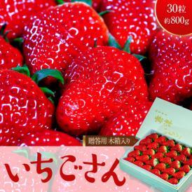 いちご イチゴ 苺 ギフト 佐賀県産 いちごさん 贈答用木箱入り 30粒 約800g 送料無料 ※冷蔵