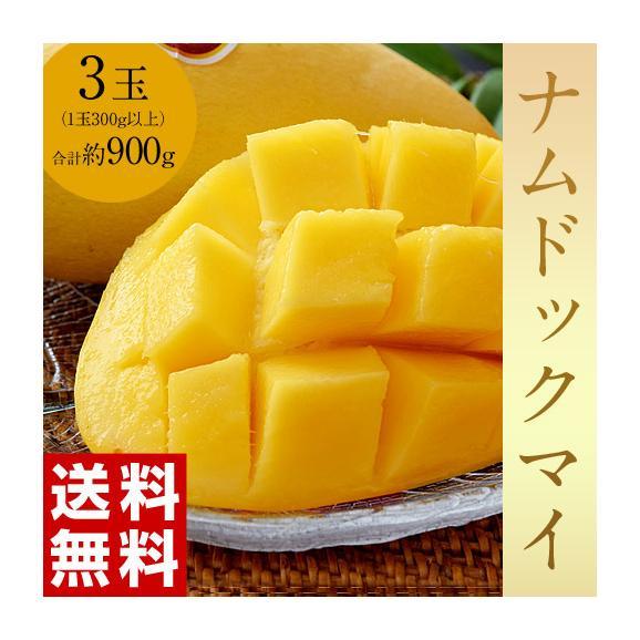 マンゴー タイマンゴー ナムドックマイ タイ産 3玉 合計約900g 果物 フルーツ ギフト 常温 送料無料01
