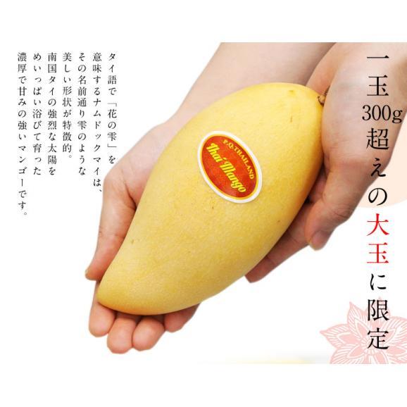 マンゴー タイマンゴー ナムドックマイ タイ産 3玉 合計約900g 果物 フルーツ ギフト 常温 送料無料02