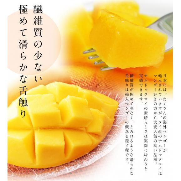 マンゴー タイマンゴー ナムドックマイ タイ産 3玉 合計約900g 果物 フルーツ ギフト 常温 送料無料03
