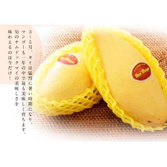 マンゴー タイマンゴー ナムドックマイ タイ産 3玉 合計約900g 果物 フルーツ ギフト 常温 送料無料04