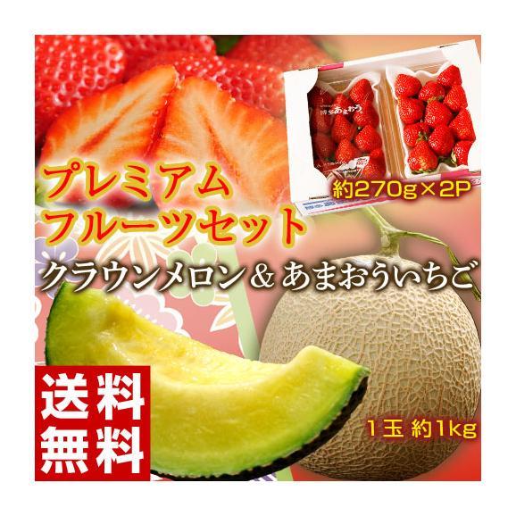 いちご イチゴ 苺 メロン マスクメロン プレミアムフルーツセット(クラウンメロン 1玉 約1kg + あまおう 約270g×2パック) ※冷蔵 送料無料01