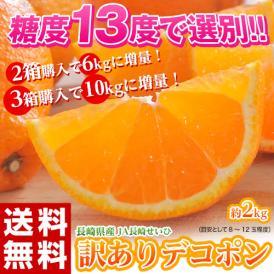 柑橘 みかん ミカン 訳あり品 長崎県産 デコポン でこぽん 約2kg (2箱購入で1箱分増量、3箱購入で2箱分増量≫) 送料無料