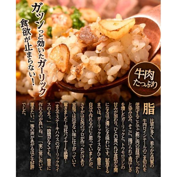 ご飯のお供 ガーリックライスの素 100g×5P 肉 牛肉 ガーリックライス 冷凍 冷凍同梱可能 送料無料03