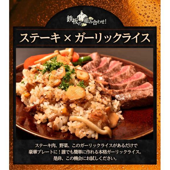 ご飯のお供 ガーリックライスの素 100g×5P 肉 牛肉 ガーリックライス 冷凍 冷凍同梱可能 送料無料05
