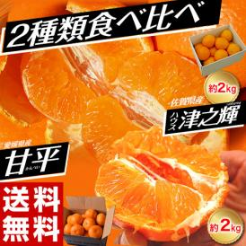 みかんに近い柑橘2種食べ比べ 愛媛県産 甘平約2kg + 佐賀県産 津之輝約2kg 送料無料