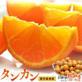 JA南さつま『タンカン』 鹿児島県産 柑橘 S~Lサイズ 約5kg(30~45玉) 産地箱入※常温 送料無料