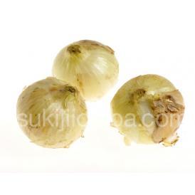 玉ねぎ 野菜 熊本県 サラたまちゃん M~Lサイズ 約5kg (目安として20~25玉) 送料無料