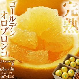 オロブロンコ カリフォルニア産 完熟 ゴールデンオロブロンコ 約3kg×2箱 (1箱の目安:7~11玉程度)送料無料