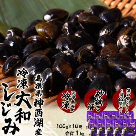 しじみ シジミ 蜆 島根県神西湖産 大和しじみ 大サイズ (M) 100g×10袋 送料無料