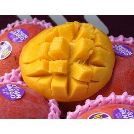 マンゴー メキシコ産 超大玉 HADEN(ヘーデン)種 マンゴー4玉 合計2kg以上(1玉500gUP) 常温 送料無料 簡易包装